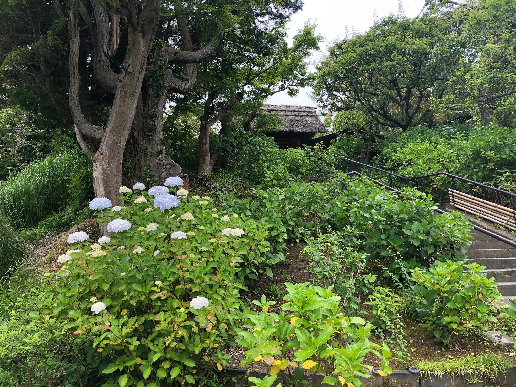 鎌倉東慶寺